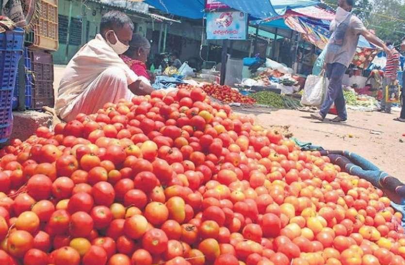 इस राज्य में 30 से 70 पैसे प्रति किलो मिल रहा टमाटर, मंडी अधिकारियों के खिलाफ किसानों ने किया प्रदर्शन