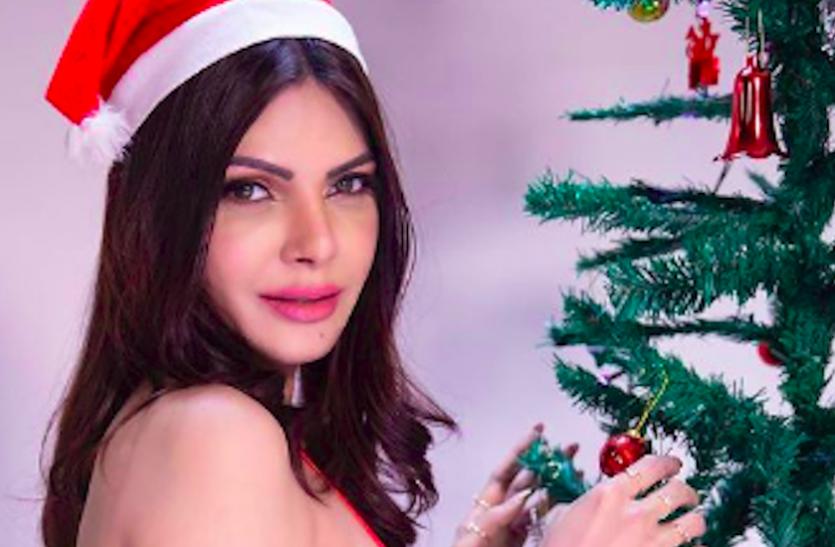 शर्लिन चोपड़ा ने ऐसे विश किया Christmas 2020, तो शमा ने किया पोल डांस,  देखें एक्ट्रेसेस का सेलिब्रेशन