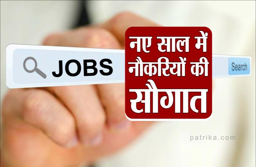 नए साल में सरकारी नौकरियों की बहार, सरकार करेगी 50,000 पदों पर भर्ती