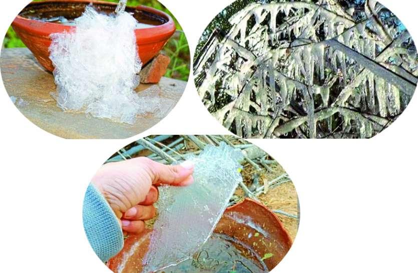 अजमेर में पारा गिरा, चूरू-झुंझुनूं जिले में पानी बना बर्फ, पेड़ व फसल पर बर्फ की परतें