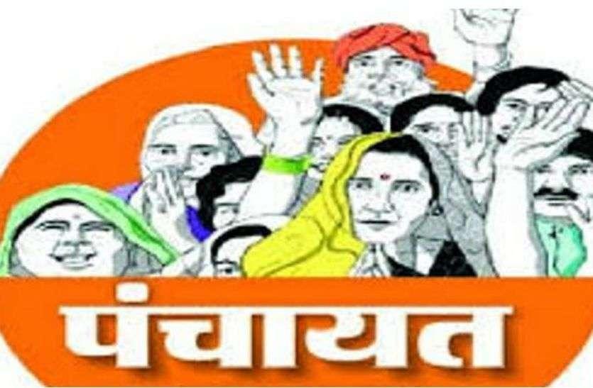 पंचायत चुनाव : भाजपा के पदाधिकारी गांव में रात्रि प्रवास कर जानेगे वोटरों का मिजाज