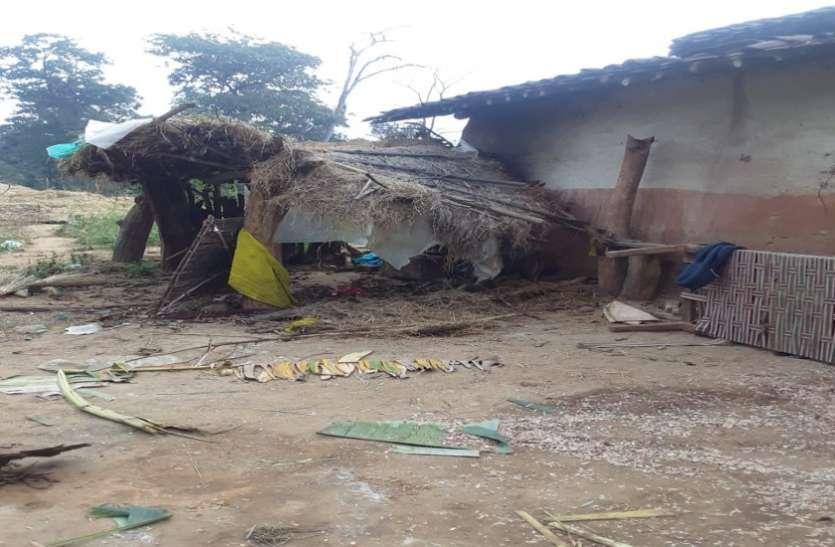 फसल सहित मकान व बाड़ी को हाथियों ने पहुंचाया नुकसान