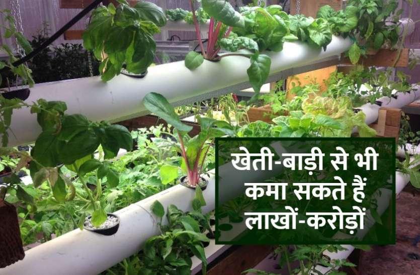 खेती-बाड़ी में कॅरियर बना कर कमा सकते हैं लाखों-करोड़ों, जानिए कैसे