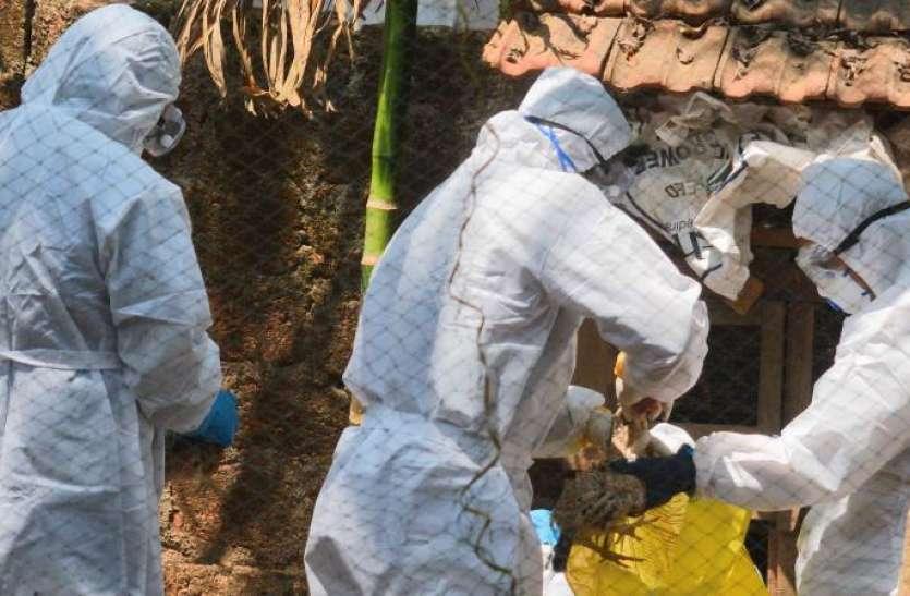 Bird Flu: केरल में आपदा घोषित, सात राज्यों में लाखों पक्षियों की मौत से मचा हड़कंप