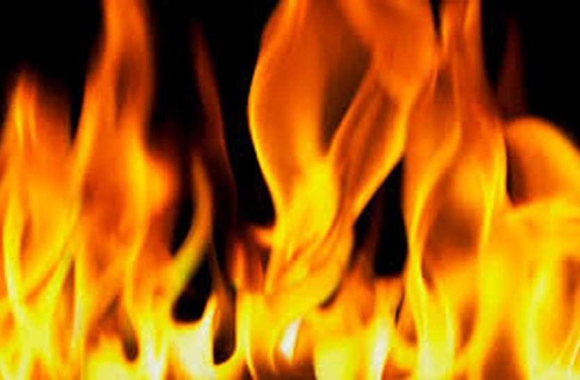 पशुशाला में आग, 16 गाय-बछड़ा व एक घोड़ी की मौत
