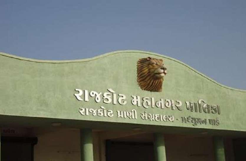 Ahmedabad  News : बर्ड फ्लू की दहशत : राजकोट का प्रद्युमन पार्क जू का पक्षीघर बंद