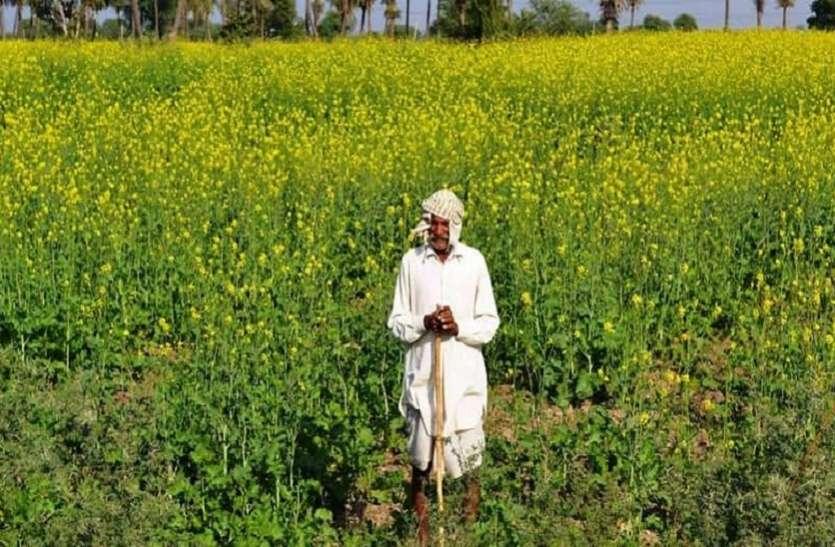 किसानों ने एसीबी में की फसल बीमा के क्लेम में गड़बड़ी शिकायत