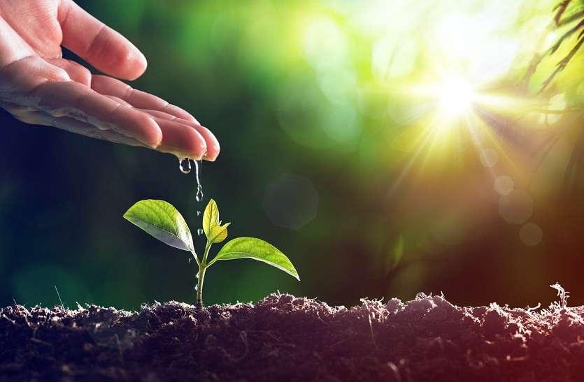 SAVE EARTH : इन आसान उपायों से बचाएं पृथ्वी और पर्यावरण, वरना सिर्फ मलाल बचेगा !