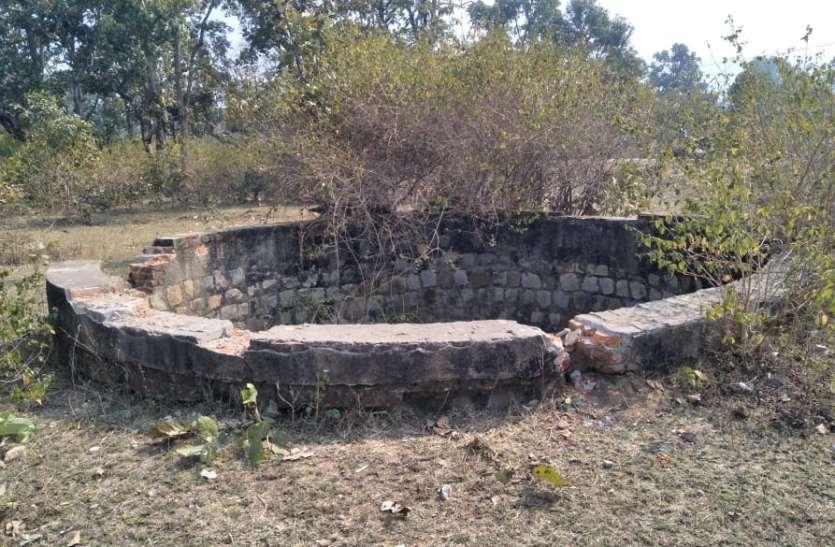 कुंआ में चीतल की लाश, वन अधिकारियों ने जांच कर किया अंतिम संस्कार