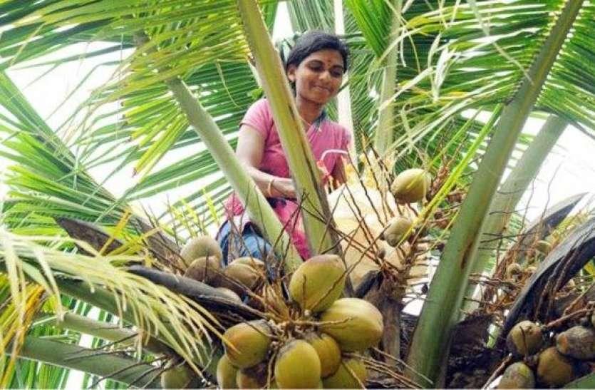 साउथ इंडिया के किसानों को खुश करने के लिए सरकार ने उठाया बड़ा कदम, बढ़ जाएगी इनकम
