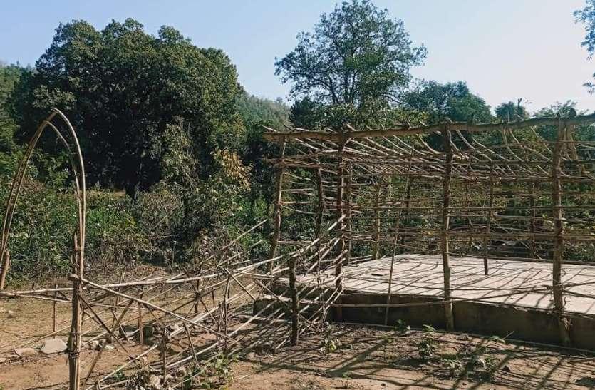 राजस्थान के  एक गांव में आदिवासी लोगों ने लकड़ी व बांस से बनाया स्कूल भवन
