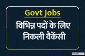 Govt Jobs : ग्रेजुएट्स के लिए निकली बंपर भर्ती, ऐसा होगा एग्जाम पैटर्न, ऐसे करें आवेदन