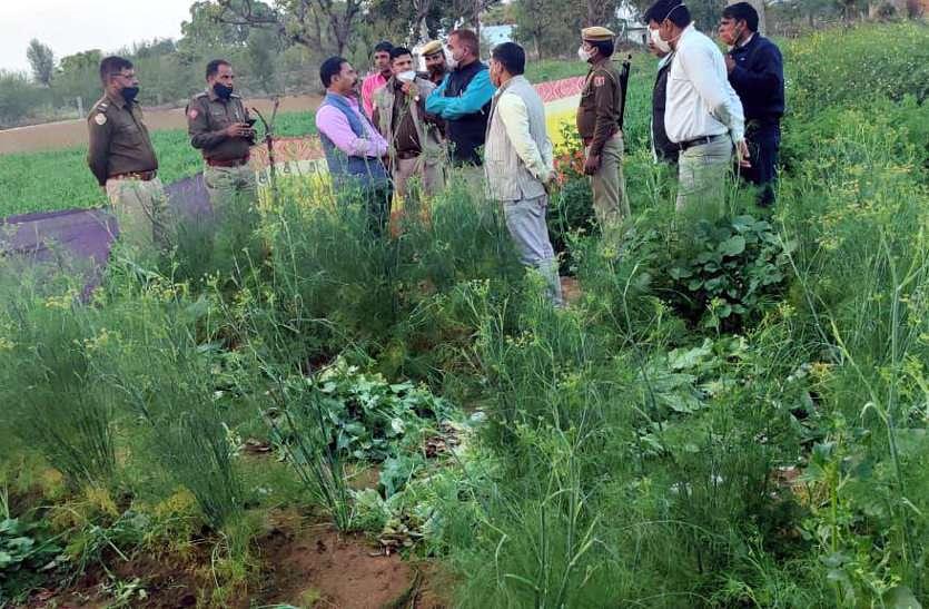 पुलिस ने एक-एक करके उखाड़े 42 हजार पौधे, जानें जयपुर में हुई कार्रवाई की वजह