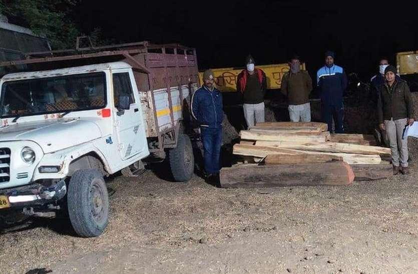 वाहन से 14 नग सागौन जब्त,  20 नग ऐसे छिपाई थी
