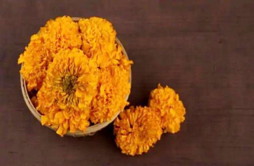 गेंदे के फूलों से बनाएं नेचुरल हेयर कलर, जानें बनाने और इस्तेमाल का तरीका