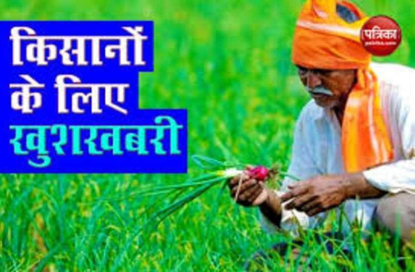 किसानों को राहत पहुंचाने की कोशिश, सरकार ने की 18 फीसदी अधिक धान की खरीदारी