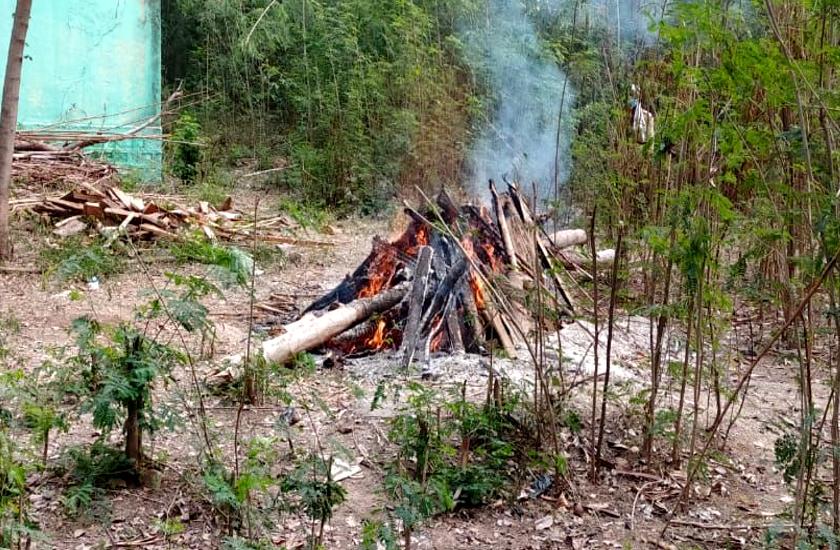 रेंज में मिला तेंदुए का शव, वन विभाग ने पोस्टमार्टम के बाद बिसरा जांच के लिये भेजा सेंपल