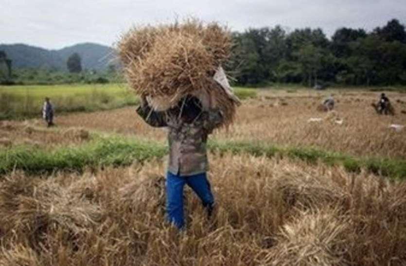 किसानों की कमाई और रोजगार के लिए इस मंत्रालय ने खोला अपना खजाना