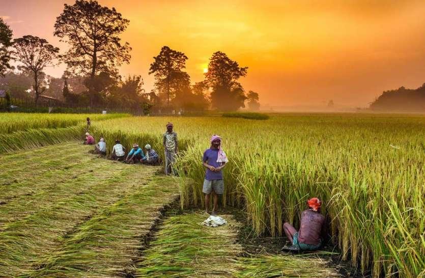केंद्र सरकार का बड़ा ऐलान, देश के लाखों किसानों के खातों में ऑनलाइन जाएगी रकम