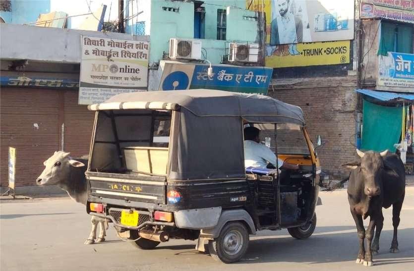 प्रशासन को ठेंगा दिखाकर ऑटो चालक उड़ा रहे यातायात नियमों की धज्जियां