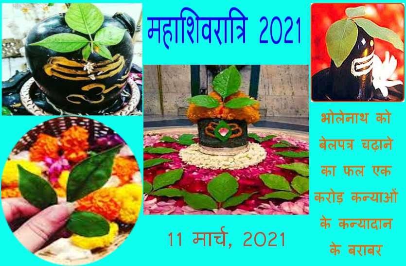 महाशिवरात्रि 2021: ऐसे चढ़ाएं महादेव पर बेलपत्र, भगवान शिव के प्रसन्न होने के साथ ही मिलेगा दस गुना ज्यादा लाभ