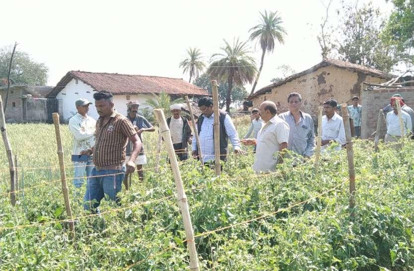 5 गांवों में ओलावृष्टि से फसल तबाह, सीएम के निर्देश पर जायजा लेने पहुंचे पूर्व विधायक