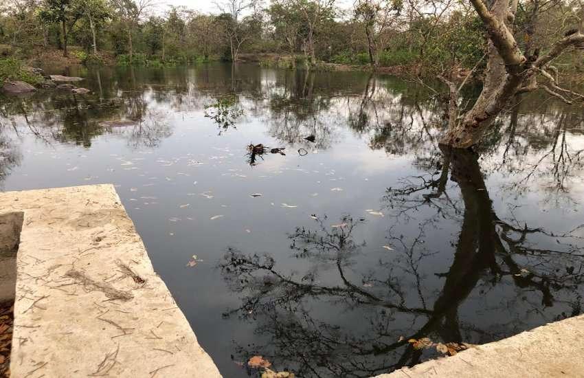 छत्तीसगढ़ में नदी-नालों को मिल रहा नया जीवन, मुख्यमंत्री बघेल की पहल पर 1310 नालों की दशा संवार कर जल संरक्षण का हो रहा है काम