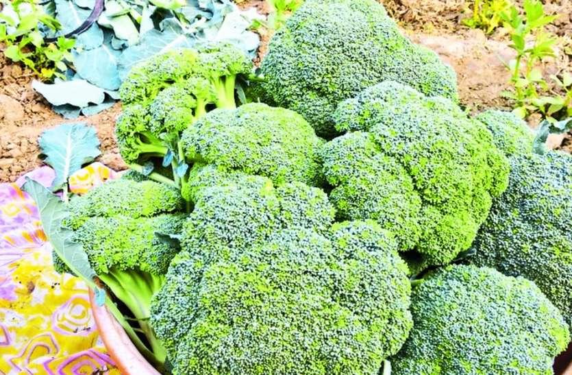 होटलों में मांग बढ़ी तो सुरेश ने शुरू की सब्जी की खेती
