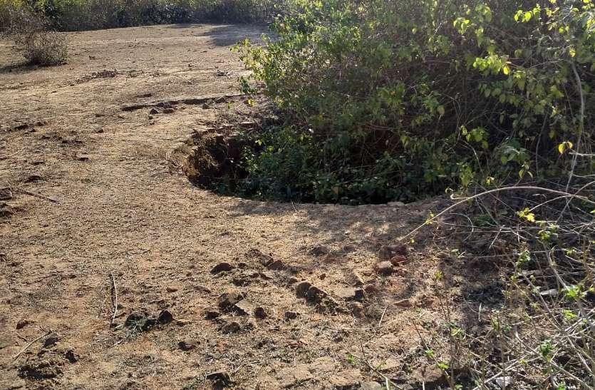 खितौली रेंज में कुएं में मृत मिला तेंदुआ