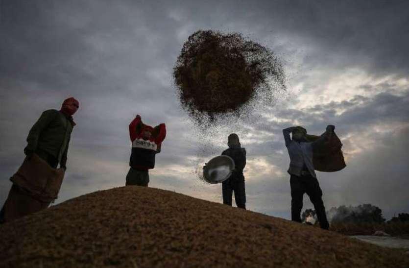 किसानों की मेहनत लाई रंग, लॉकडाउन और आंदोलन के बावजूद देश में होगा रिकॉर्ड उत्पादन