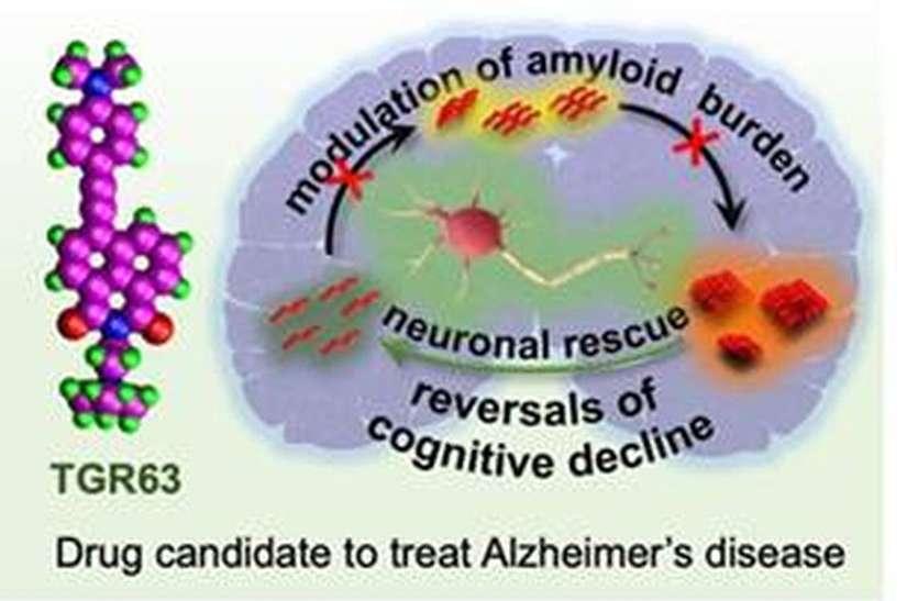 अल्जाइमर उपचार के लिए कारगर दवा विकसित होने की उम्मीद बढ़ी