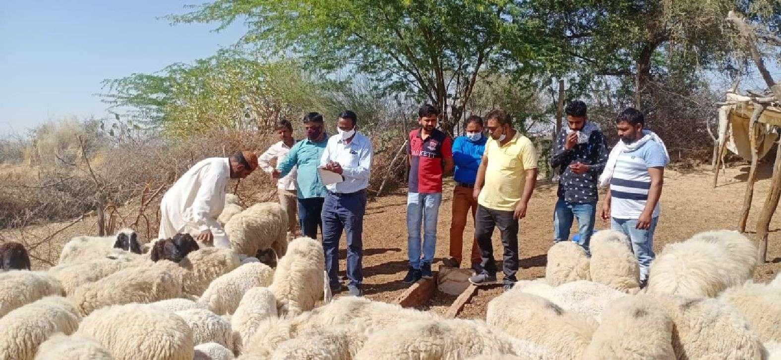 जिम्मेदारों की तंद्रा टूटी, गांव पहुंचा चिकित्सकीय दल