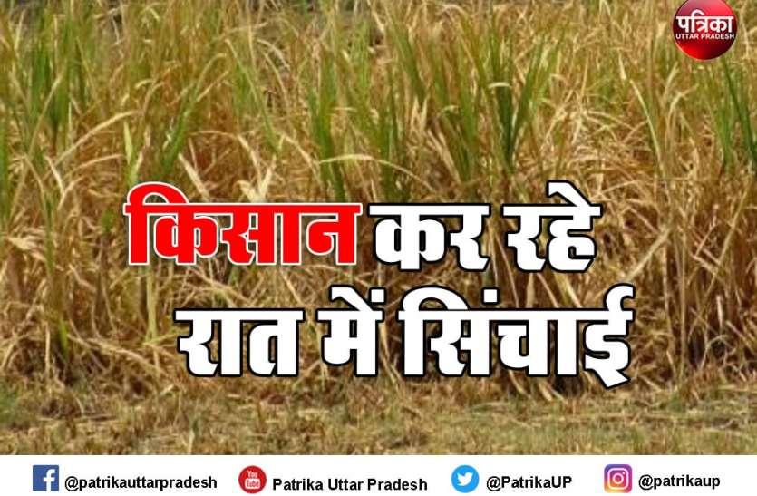 किसानों के चेहरे की मुस्कुराहट गायब, जनवरी-फरवरी में मात्र आठ मिमी बारिश, गेहूं व तिलहन फसलों को खतरा