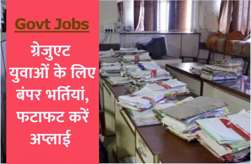 हरियाणा सरकार में पटवारी और ग्राम सचिव के 2385 पदों पर निकली भर्ती, जानिए पात्रता सहित पूरी डिटेल्स