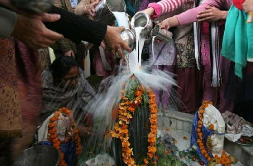Mahashivratri 2021 Rudrabhishek : महाशिवरात्रि के दिन शिवलिंग पर अर्पित करें ये 10 चीजें, दूर होगीं बाधांए