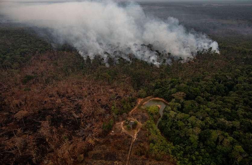 अमेजन के विशाल वर्षावन कार्बन सोखने की बजाय छोडऩे लगें तो क्या होगा?