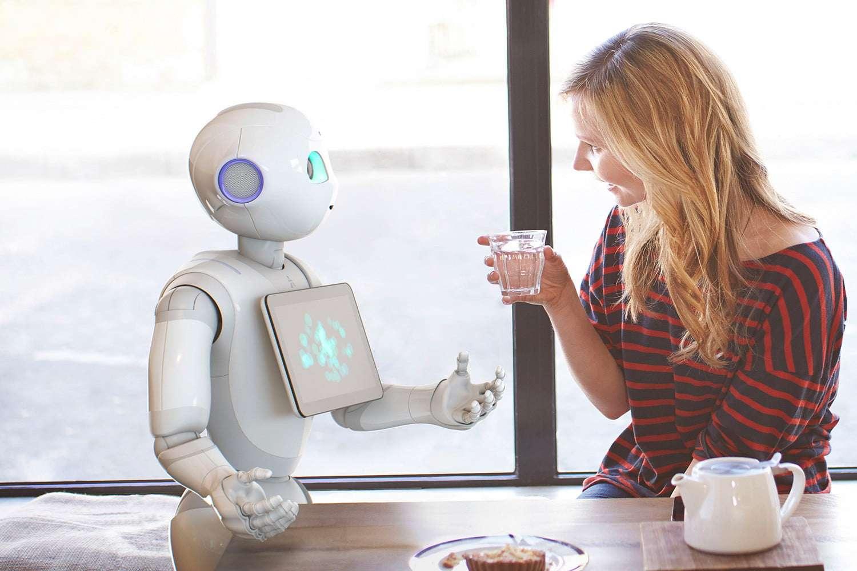 जापानी कंपनी का दावा 2023 तक हर घर में होंगे घरेलू रोबोट?