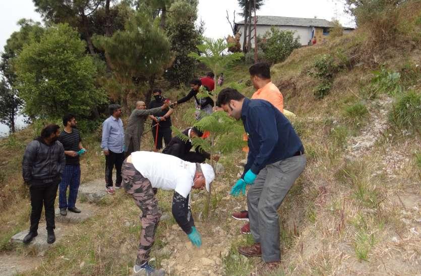 हिमाचल प्रदेश में अनूठी पहल, धौलाधार महोत्सव में वृक्षारोपण कर दिया अनोखा संदेश