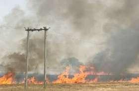 आग में जल गई लाखों की गेहूं की फसल