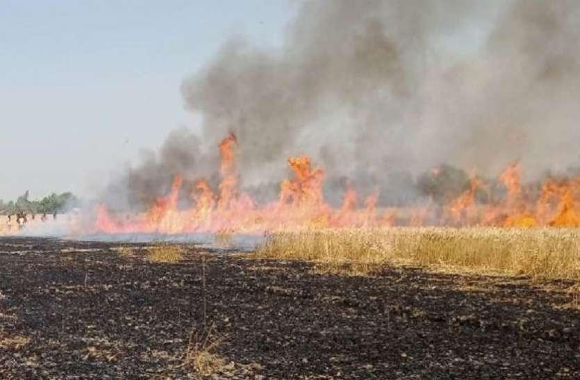 11 गांवों में 17 एकड़ की फसल आग में जल कर राख