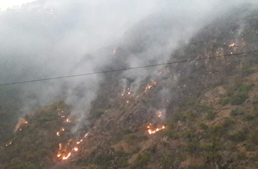 उत्तराखण्ड के जंगल में लगी आग बेकाबू, वन विभाग की टीम बेबस