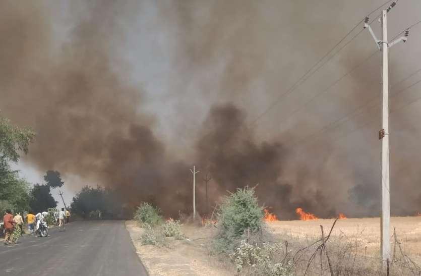 खेतों में लगी आग से जली गेहूं की खड़ी फसल आधा घंटे नेशनल हाइवे भी थमा रहा