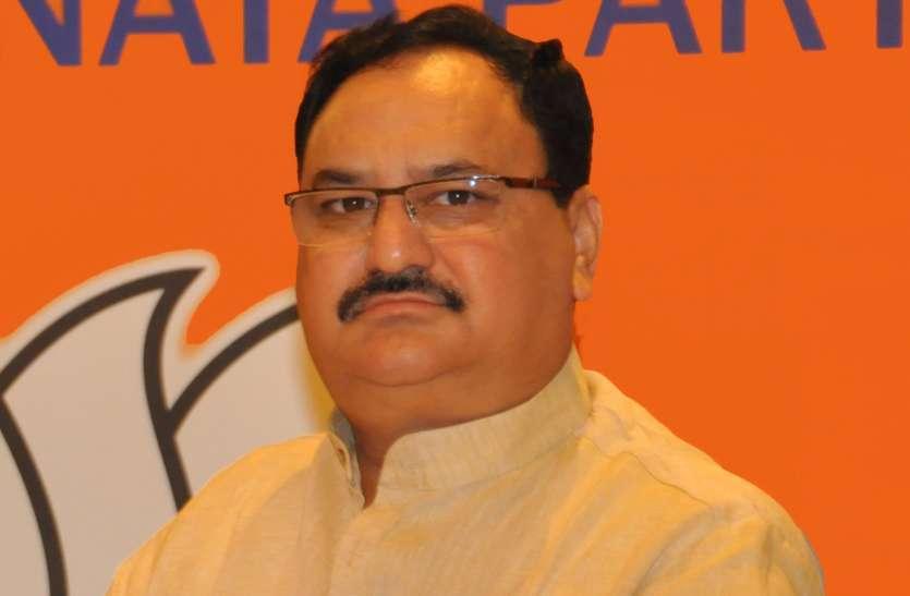 चुनाव के बाद भाजपा अध्यक्ष करेंगे 'कर्नाटक मामले' का समाधान