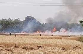 श्रावस्ती में आग से 230 बीघे गेहूं की फसल जलकर राख, दो किसान झुलसे