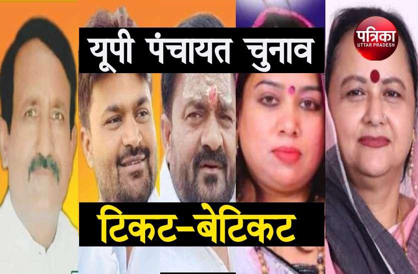 Panchayat Election: देवरानी को मिला भाजपा से टिकट तो मुकाबले में उतरी जेठानी, बीजेपी विधायक के भाई भतीजे हुए बागी, निर्दलीय भरा पर्चा