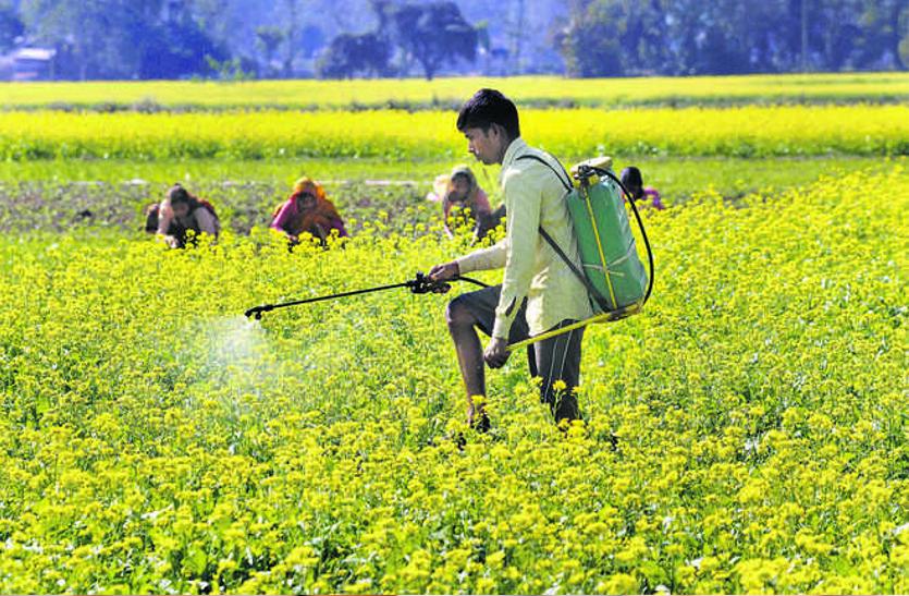 कृषि कानून : अनुबंध पर खेती व छोटे किसानों के लिए मायने