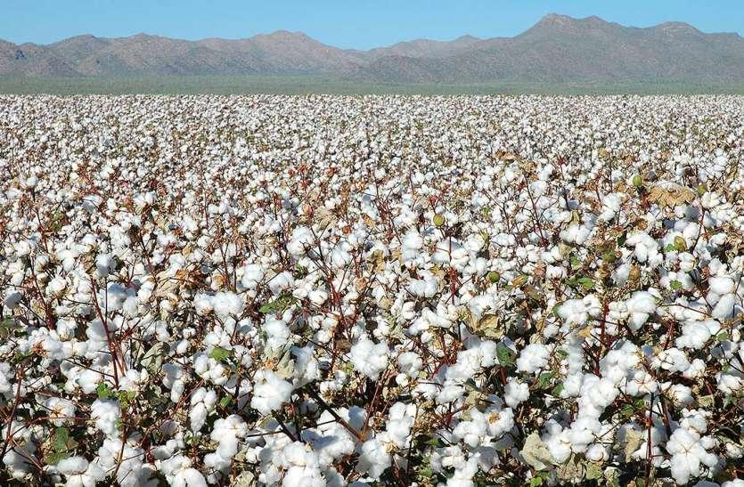 खेती-किसानी: किसानों की आय बढ़ाने के लिए विश्व बैंक की पहल