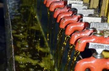 बरसों बाद सरसों ने संवारी तेल उद्योग की सेहत