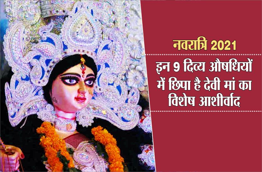 Nine Goddesses of Navratri : नौ देवियों की नौ औषधियां और जानें इस बार कौन का पुष्प लाएगा आपके जीवन में खुशहाली