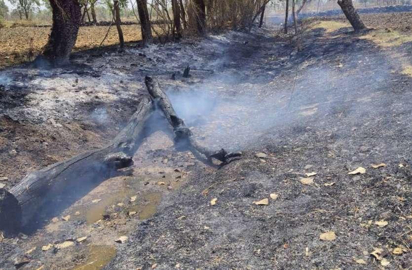 आग में लकडिय़ां सहित घरेलू सामान जलकर हुआ राख